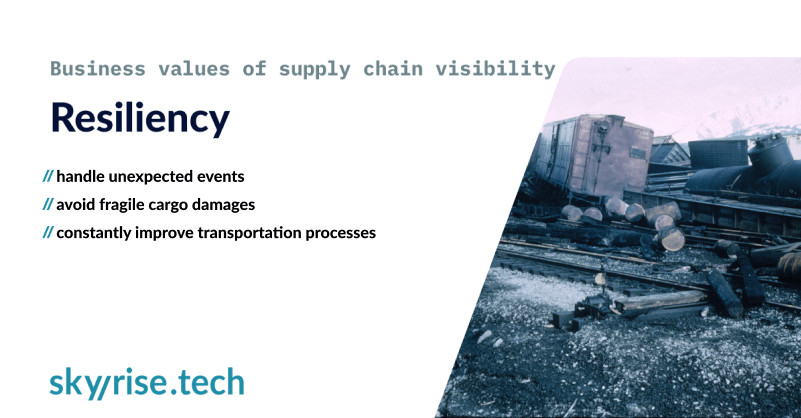 resiliency-supply-chain-visibility-value-3 (1)